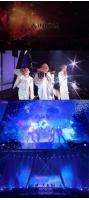 【公式】「WINNER」、コンサートDVDスポット映像公開…ファンのあたたかな応援の画像