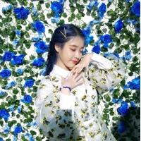 IU(アイユー)、新アルバム発売感想「苦労したことも耐えたこともあなたのおかげ」の画像