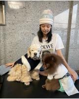 ジェニー(BLACKPINK)、韓服を着た愛犬たちと新年の挨拶の画像