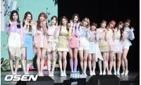 【全文】「IZ*ONE」、2月中の活動再開を決定=Mnetが発表の画像